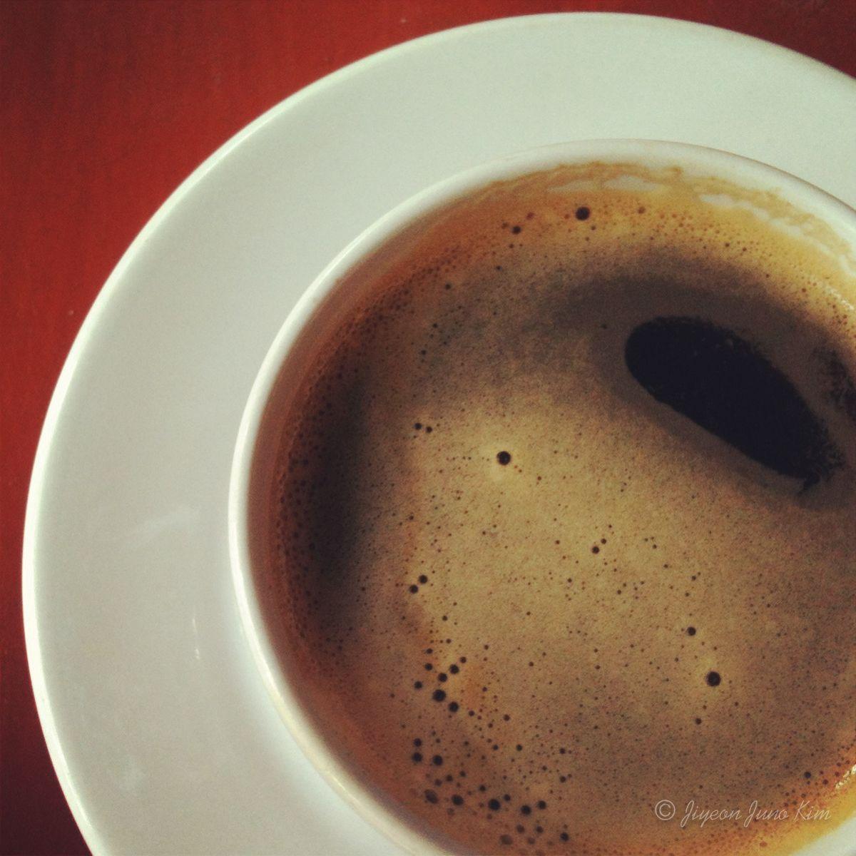 Organic coffee at Finca Argovia