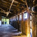 Shearing shed at Charlotte Plains
