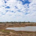 Woolabra Station Outback Landscape