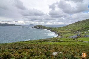 Ireland-Dingle peninsula-3766