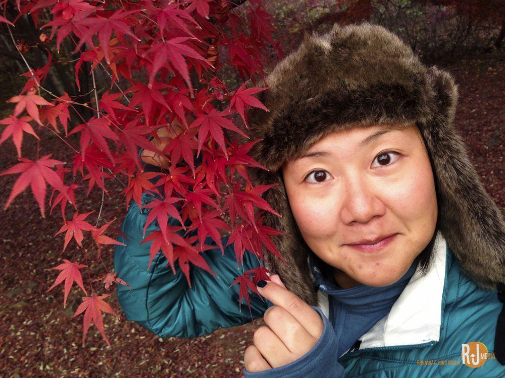 Late autumn in Seoul