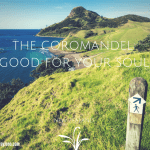 The Coromandel: Good for Your Soul(1)