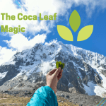 Coca leaf magic